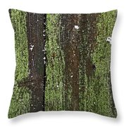Mossy Winter Fence Throw Pillow