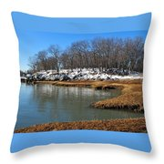 Moswetuset Hummock In Winter Throw Pillow
