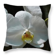Moth Orchid Throw Pillow