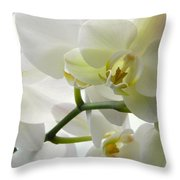 Moth Orchids - White Throw Pillow