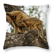 Mother And Baby Black Howler Monkeys Climbing Throw Pillow