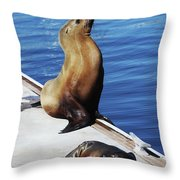 Mother And Baby Sea Lion At Oceanside  Throw Pillow