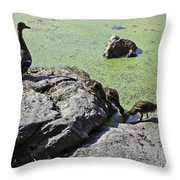 Mother And Her Ducklings Throw Pillow