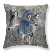 Mother And Young Throw Pillow