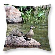 Mother Duck With Juveniles Throw Pillow
