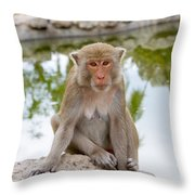 Mother Monkey Throw Pillow