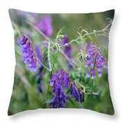 Mother Nature's Art Throw Pillow