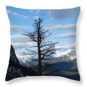 Mother Natures Canvas Throw Pillow