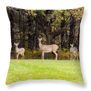 Mother Of Two Throw Pillow