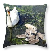 Mother Swan And Baby Cygnets Throw Pillow