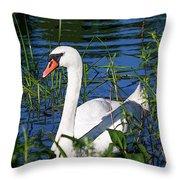 Mother Swan Throw Pillow