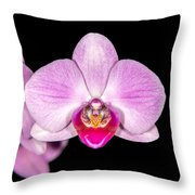 Mother's Day Present Throw Pillow