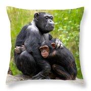 Mothers Hug Throw Pillow