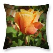 Mother's Rose Throw Pillow