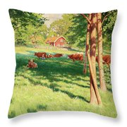 Motif From Skedevid In Tjarstad Throw Pillow