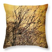 Motif Japonica No. 14 Throw Pillow
