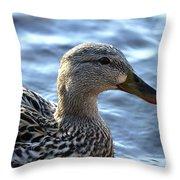 Mottled Duck Big Spring Park Throw Pillow