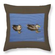 Mottled Ducks, South Padre Island, Texas Throw Pillow