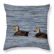 Mottled Ducks Throw Pillow