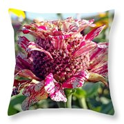 Mottled Pink Cone Flower Throw Pillow