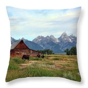 Moulton Barn Throw Pillow