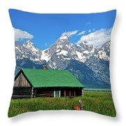 Moulton Cabin Throw Pillow