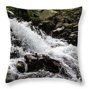 Mounain Stream Throw Pillow