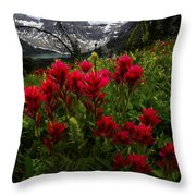 Mount Assiniboine Canada 11 Throw Pillow