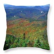 Mount Chocorua Foliage Throw Pillow