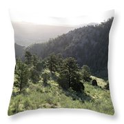 Mount Galbraith In Spring Throw Pillow