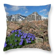 Mount Holy Cross With Wildflowers 2 Throw Pillow