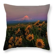 Mount Hood And Balsam Root Blooming In Spring Throw Pillow