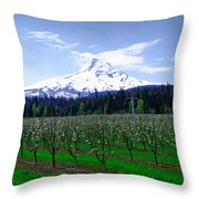 Mount Hood Behind Orchard Blossoms Throw Pillow