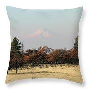 Mount Hood Over The Flats Throw Pillow
