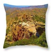 Mount Lemmon II Throw Pillow