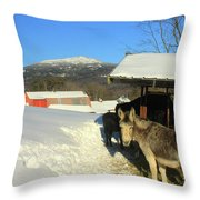 Mount Monadnock From East Hill Farm Throw Pillow