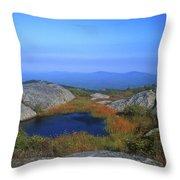 Mount Monadnock Summit Pond Throw Pillow