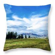 Mount Pagosa Meadow Throw Pillow