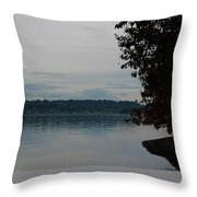 Mount Rainier National Park Throw Pillow