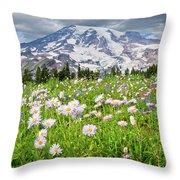 Mount Rainier And A Meadow Of Aster Throw Pillow