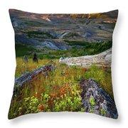 Mount Saint Helens Throw Pillow
