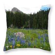 Mount Sneffels Lupine Landscape Throw Pillow