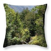 Mount Tamalpais Forest View Throw Pillow