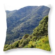 Mount Tamalpais From Blithedale Ridge Throw Pillow