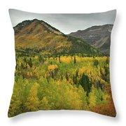 Mount Timpanogos Fall Colors Throw Pillow