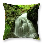 Mount Toby Roaring Falls Throw Pillow