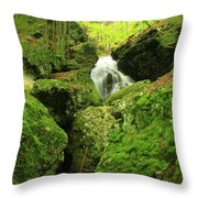 Mount Toby Roaring Falls Ravine Throw Pillow