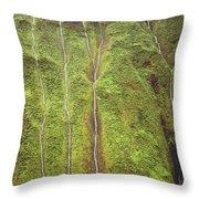 Mount Waialeale Throw Pillow