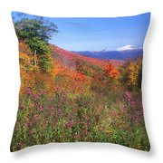 Mount Washingon Flowers Foliage Throw Pillow