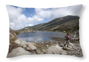 Mount Washington - New Hampshire Usa Lakes Of The Clouds Throw Pillow